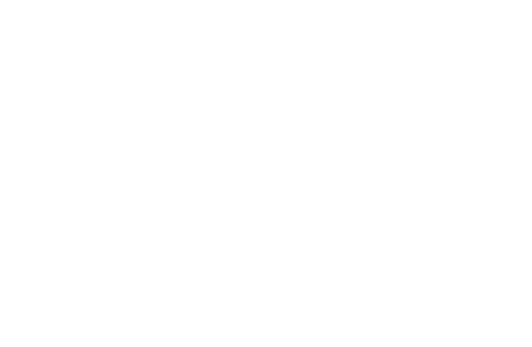 Surveillance/monitoring icon